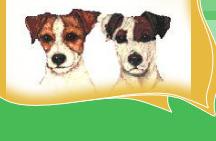 Hondenschool Doetinchem